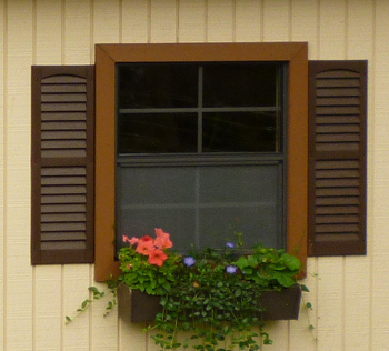 Brown Shutters & Flower Box