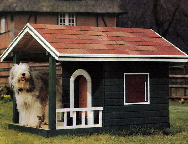 Doghouse Diy Ideas Shed Windows And More 843 399 1820