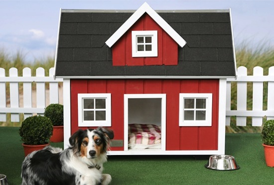 Doghouse Diy Ideas Shed Windows And