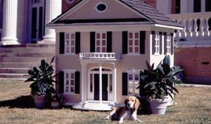 DIY Doghouse Ideas