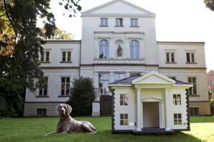 Doghouse DIY Ideas